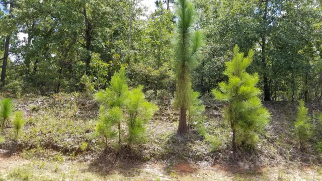LOT 2 Pony Trail, AIKEN, SC 29803 (MLS #103394) :: Shannon Rollings Real Estate