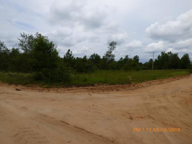 0 Gunter Pond Road, NEW HOLLAND, SC 29006 (MLS #103608) :: Shannon Rollings Real Estate