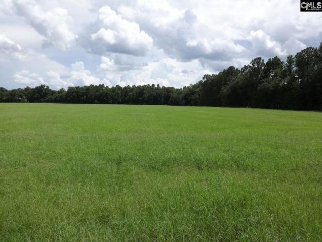 TBD S. Dixie Road, WAGENER, SC 29164 (MLS #103921) :: Greg Oldham Homes
