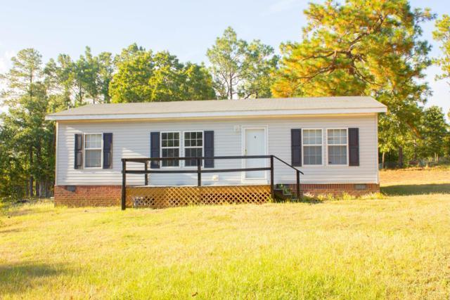 338 Lake Shore Drive, AIKEN, SC 29801 (MLS #104228) :: Greg Oldham Homes