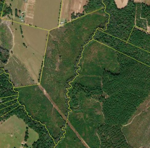 247 Mossy Tree Lane, AIKEN, SC 29803 (MLS #104250) :: Fabulous Aiken Homes & Lake Murray Premier Properties