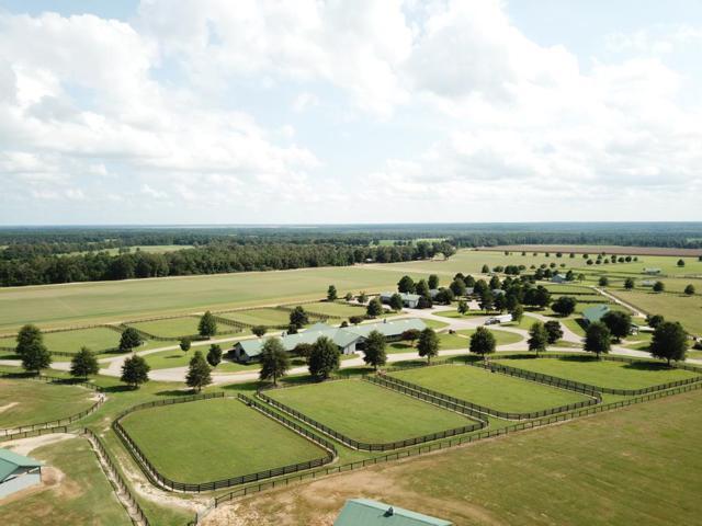 491 Burkelo Rd, WAGENER, SC 29164 (MLS #104384) :: Shannon Rollings Real Estate