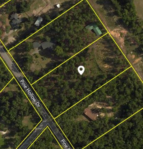 164 (Temp) Pine Hollow Drive, AIKEN, SC 29803 (MLS #104490) :: Shannon Rollings Real Estate