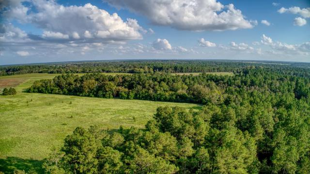 000 New Holland Road, WAGENER, SC 29164 (MLS #104536) :: Shannon Rollings Real Estate