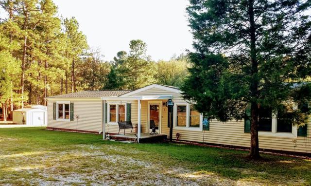 292 Glenwood Drive, WARRENVILLE, SC 29851 (MLS #104652) :: Shannon Rollings Real Estate