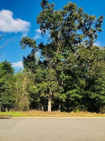 155 Foxhound Run Rd, AIKEN, SC 29803 (MLS #104716) :: Venus Morris Griffin | Meybohm Real Estate