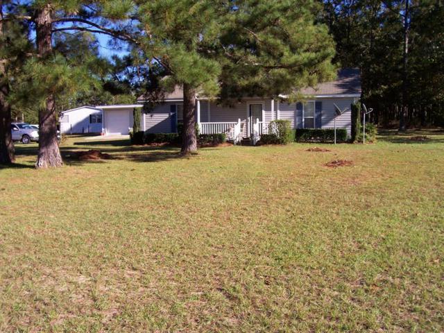 113 Track, PELION, SC 29123 (MLS #104810) :: Venus Morris Griffin | Meybohm Real Estate