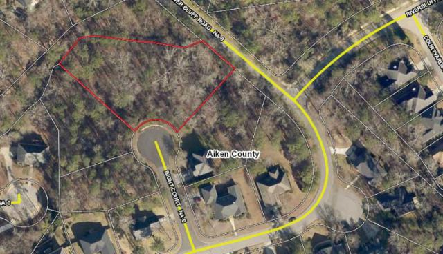 305 Bight Court, NORTH AUGUSTA, SC 29841 (MLS #104858) :: Shannon Rollings Real Estate