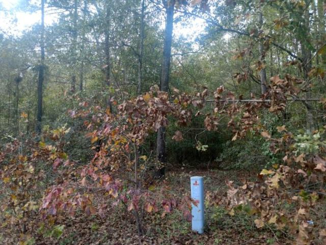 Lot 6 Northgate Drive, BARNWELL, SC 29812 (MLS #105006) :: RE/MAX River Realty