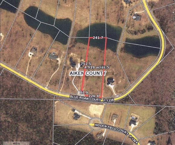 LOT 35 Blue Roan Court, WARRENVILLE, SC 29851 (MLS #106166) :: Fabulous Aiken Homes & Lake Murray Premier Properties