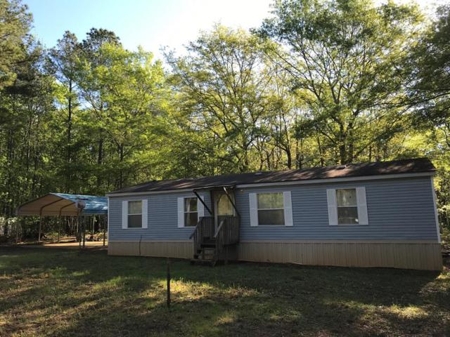 3495 Martintown Rd, EDGEFIELD, SC 29824 (MLS #106928) :: Meybohm Real Estate
