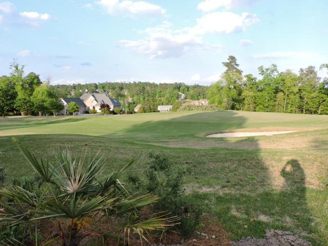 158 Silver Meadow Circle, AIKEN, SC 29803 (MLS #106935) :: Meybohm Real Estate