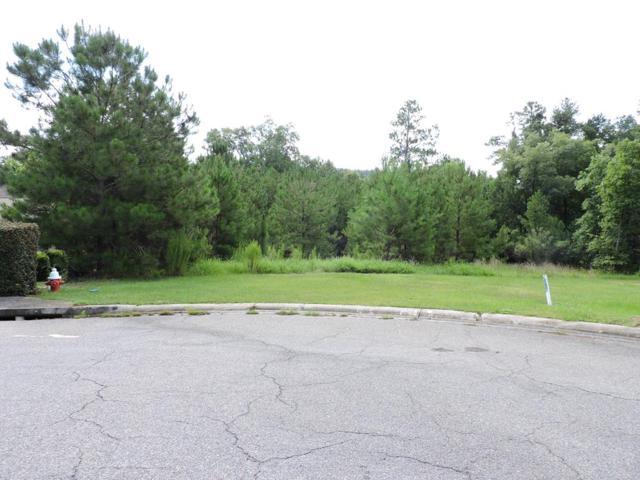 192 Foxhound Run Road, AIKEN, SC 29803 (MLS #108054) :: Venus Morris Griffin | Meybohm Real Estate