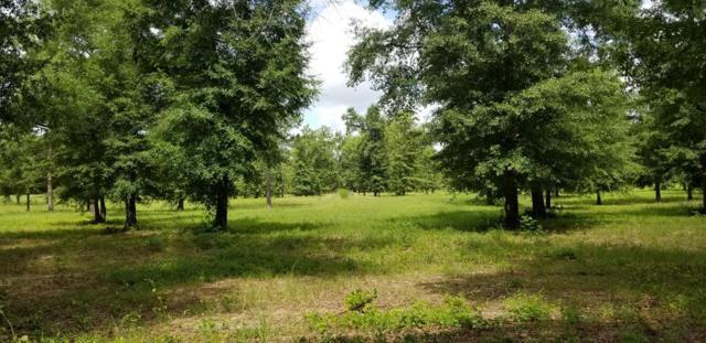 0 Wagener Road, AIKEN, SC 29805 (MLS #108064) :: Shannon Rollings Real Estate