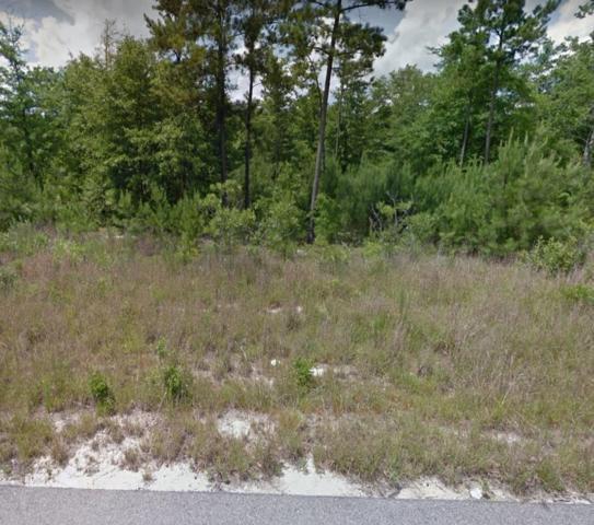 0 Nassau Pass, EDGEFIELD, SC 29860 (MLS #108404) :: Fabulous Aiken Homes & Lake Murray Premier Properties