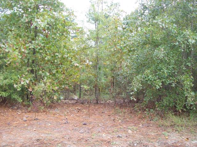 5264 Pleasant Point Drive, WARRENVILLE, SC 29851 (MLS #109547) :: RE/MAX River Realty