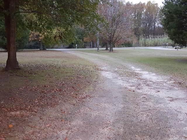 223 Holmes Pond Road, JOHNSTON, SC 29832 (MLS #109744) :: Fabulous Aiken Homes & Lake Murray Premier Properties