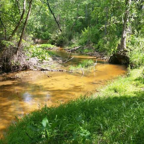 000 Dragon Lair Road, TRENTON, SC 29847 (MLS #109951) :: RE/MAX River Realty