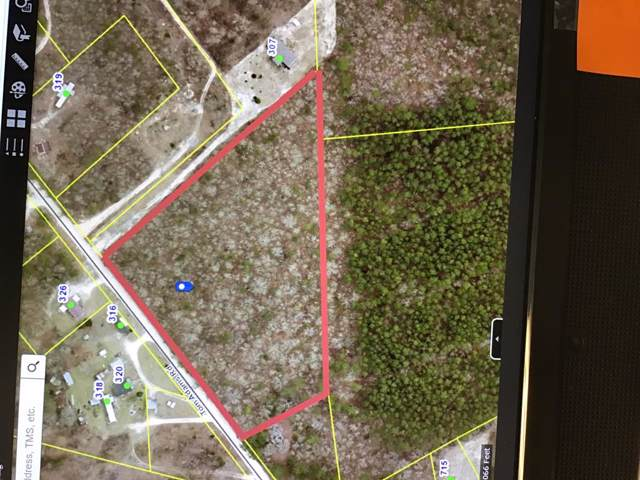 00 Toms Adams Road, LEESVILLE, SC 29070 (MLS #110048) :: Shannon Rollings Real Estate