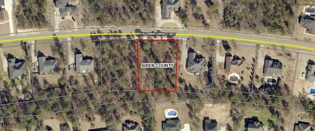000 Callaway Drive, GRANITEVILLE, SC 29829 (MLS #110793) :: Shannon Rollings Real Estate