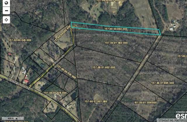 0 Youngblood Road, EDGEFIELD, SC 29847 (MLS #111480) :: Fabulous Aiken Homes & Lake Murray Premier Properties