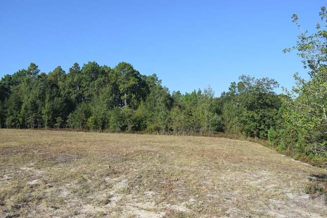 Lot 14 Riding Ridge Court, AIKEN, SC 29801 (MLS #111643) :: Tonda Booker Real Estate Sales