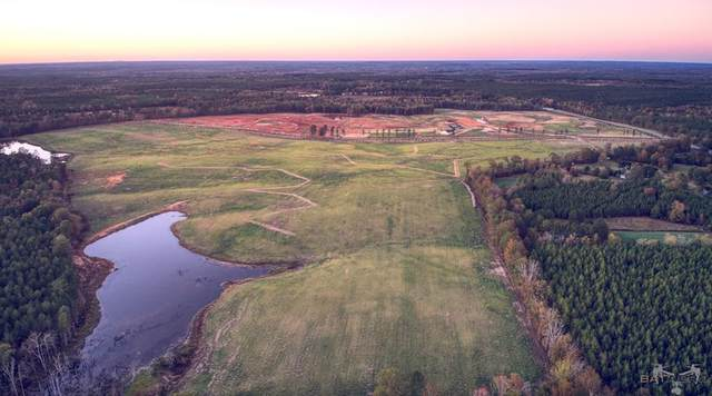 133+ Acres Moores Road, EDGEFIELD, SC 29824 (MLS #112312) :: RE/MAX River Realty