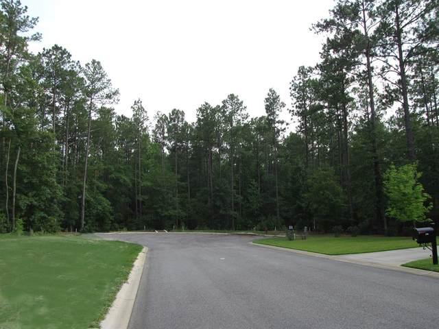 290 Whistling Straits Lane, AIKEN, SC 29803 (MLS #112837) :: The Starnes Group LLC
