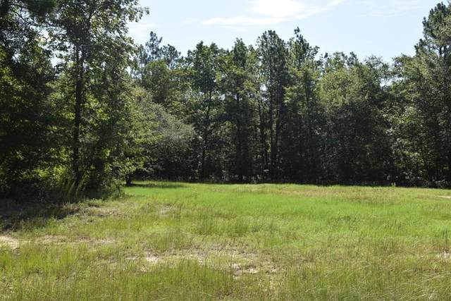 Lot 8 Turtle Pond Court, AIKEN, SC 29803 (MLS #112846) :: RE/MAX River Realty