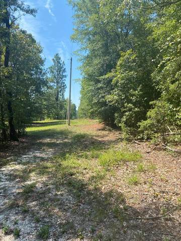 0 Pickett Lane, AIKEN, SC 29803 (MLS #113190) :: RE/MAX River Realty