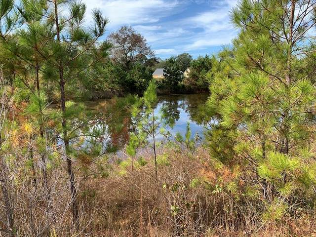 Lot 97 Apple Lane, EDGEFIELD, SC 29824 (MLS #114107) :: For Sale By Joe | Meybohm Real Estate