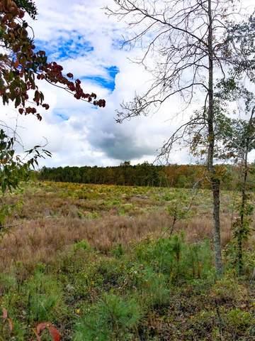 0 Cooks Pond Road, WINDSOR, SC 29856 (MLS #114132) :: Fabulous Aiken Homes