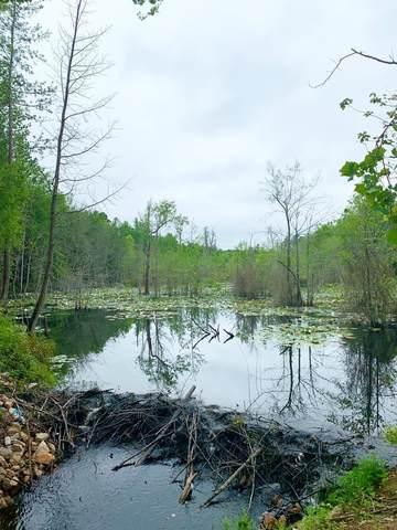 597 White Pond Road, WILLISTON, SC 29853 (MLS #114510) :: RE/MAX River Realty