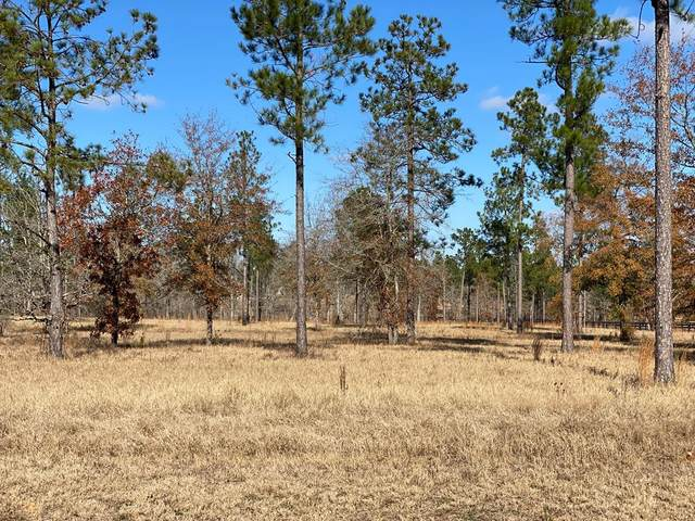 Lot 47 Marsh Tacky Run, AIKEN, SC 29803 (MLS #114752) :: Shaw & Scelsi Partners