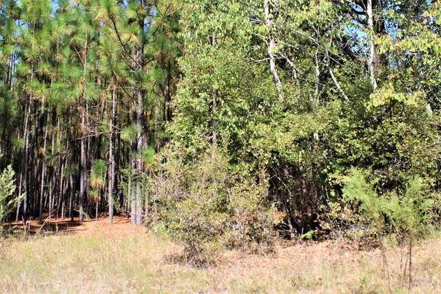 0000 Webbs Pond Road, WILLISTON, SC 29853 (MLS #114959) :: Tonda Booker Real Estate Sales