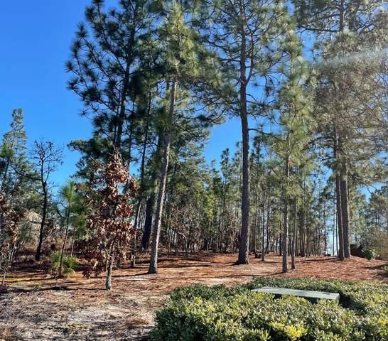 000 Saddlebrook Trail, GRANITEVILLE, SC 29829 (MLS #115158) :: Tonda Booker Real Estate Sales