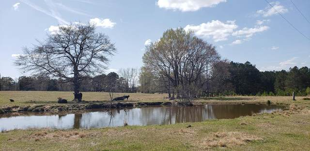 716 Augusta Road, EDGEFIELD, SC 29824 (MLS #116056) :: RE/MAX River Realty