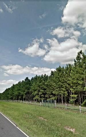000 Mt Calvary Road, TRENTON, SC 29847 (MLS #116391) :: The Starnes Group LLC