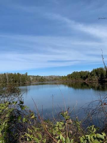 150 Upper Pond Road, WAGENER, SC 29164 (MLS #116618) :: Shannon Rollings Real Estate