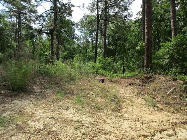 119 Plainview Drive, WARRENVILLE, SC 29851 (MLS #116965) :: Shannon Rollings Real Estate