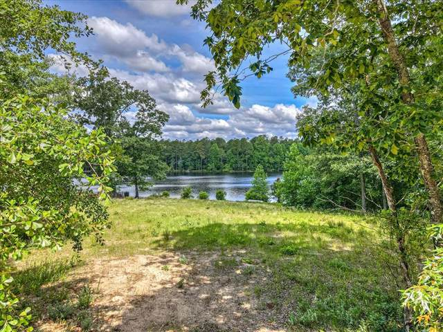 387 Wexford Mill Drive, WAGENER, SC 29164 (MLS #117134) :: RE/MAX River Realty