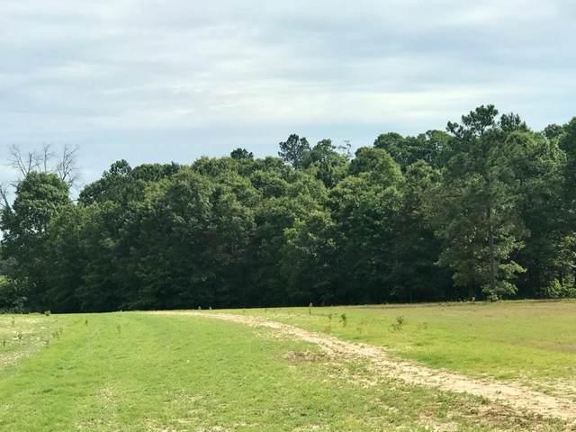 0 Shell Stone Trail, AIKEN, SC 29803 (MLS #117199) :: Shannon Rollings Real Estate