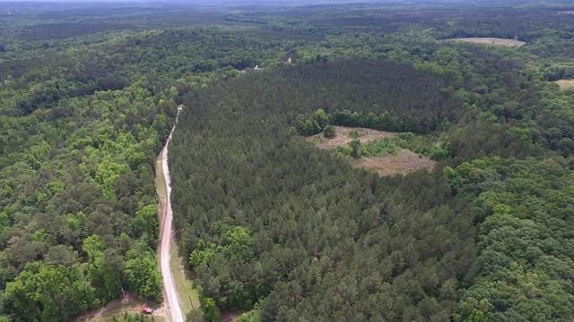 Lot 001 Razor Ridge Road, TRENTON, SC 29847 (MLS #117229) :: RE/MAX River Realty