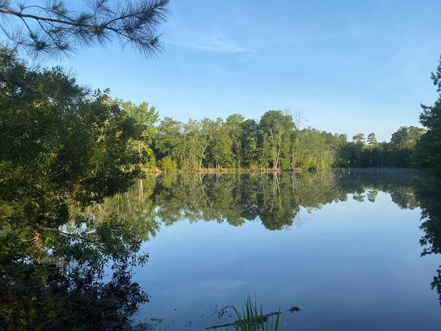 TBD Millen Highway, SYLVANIA, GA 30467 (MLS #117289) :: Shannon Rollings Real Estate