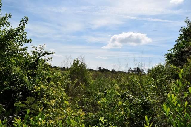 840 Osbon Drive, AIKEN, SC 29801 (MLS #117330) :: Tonda Booker Real Estate Sales