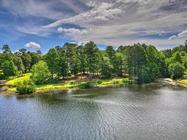Lot 8A Wexford Mill Drive, WAGENER, SC 29164 (MLS #117525) :: RE/MAX River Realty
