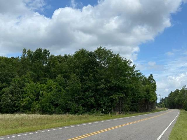 13.87 Acres State Park Road, WINDSOR, SC 29856 (MLS #117624) :: RE/MAX River Realty
