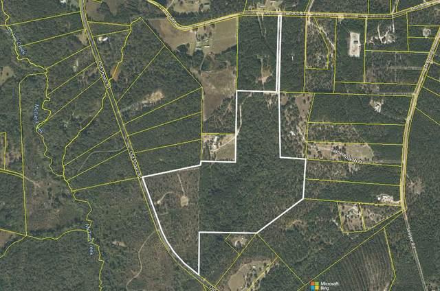000 Old Shoals Road, MONETTA, SC 29105 (MLS #117919) :: The Starnes Group LLC