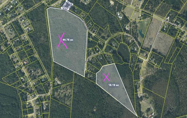 000 Tanglewood Drive, BAMBERG, SC 29003 (MLS #118086) :: RE/MAX River Realty