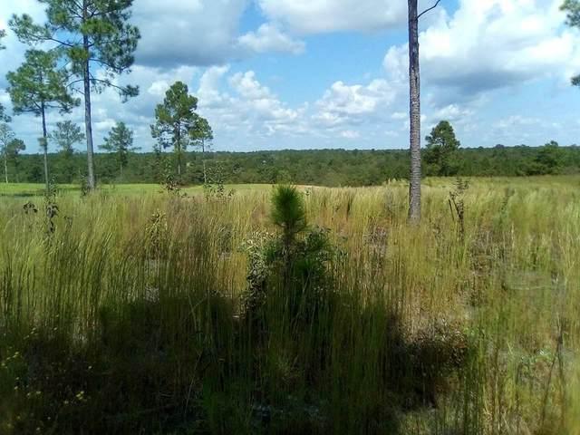 0 Joyner Pond Road, AIKEN, SC 29803 (MLS #119287) :: For Sale By Joe   Meybohm Real Estate